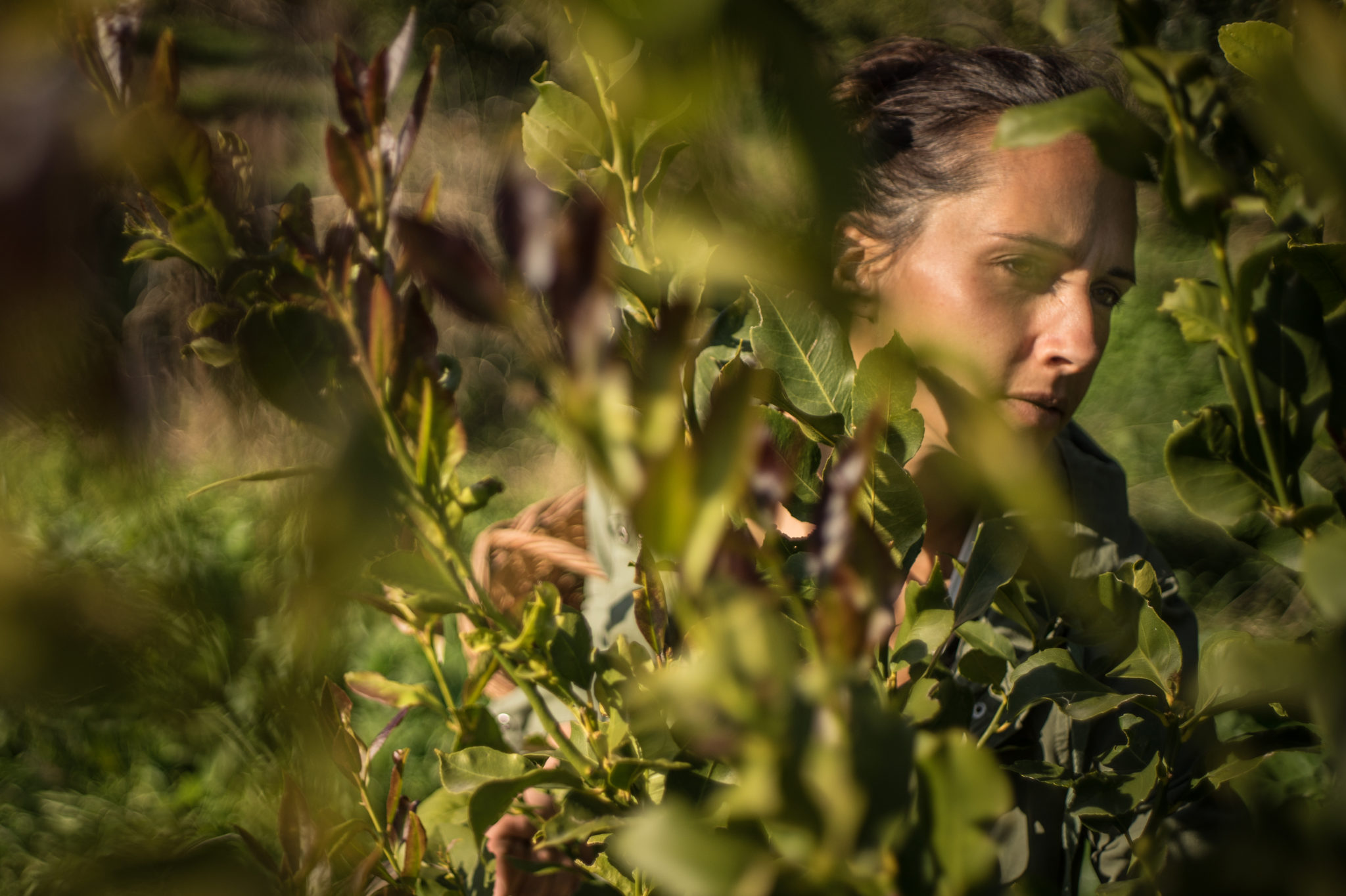 Sheila Darmos natural organic farmer