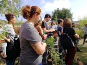 Workshop on regenerative farming and Permaculture