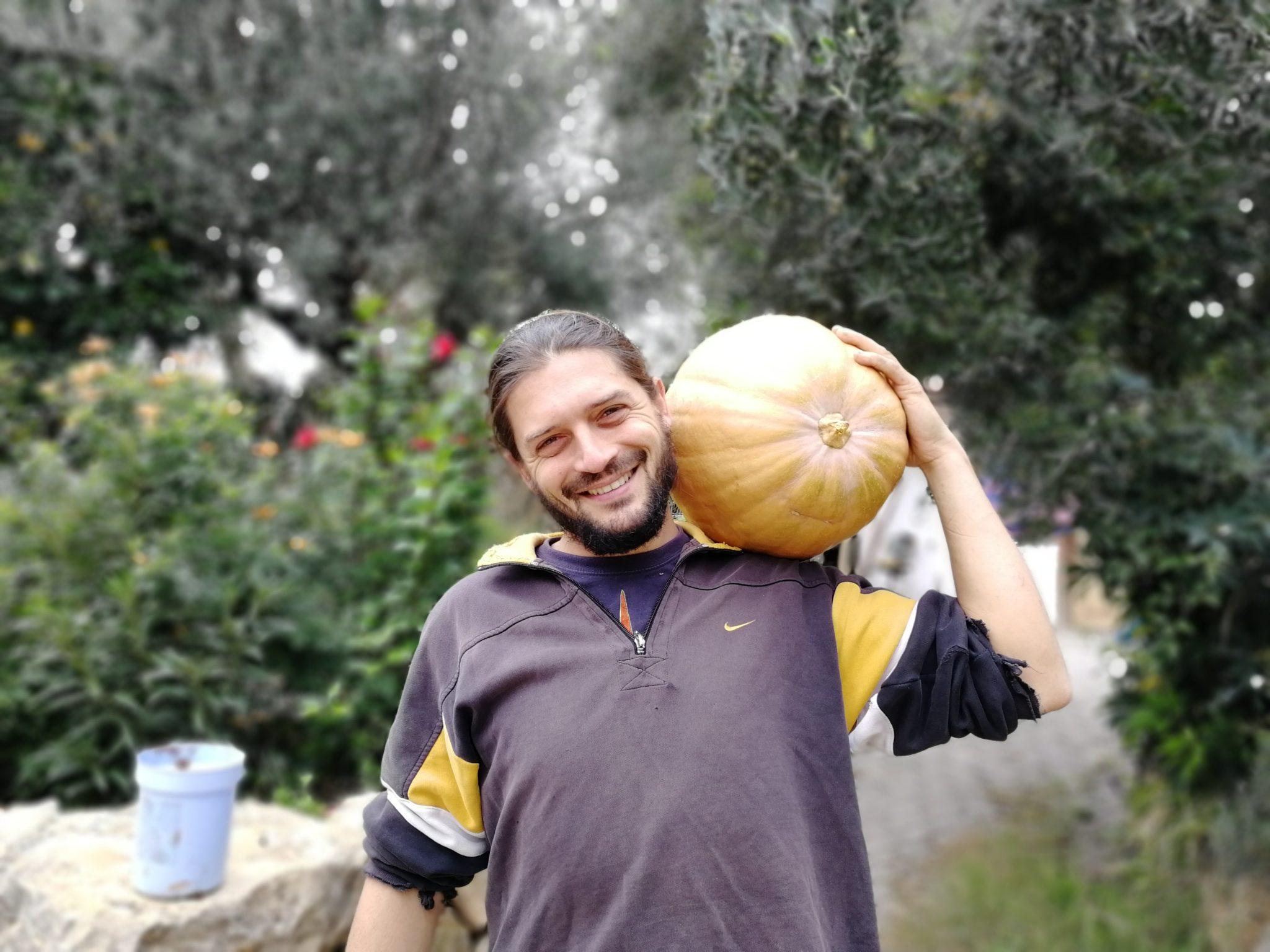 Giuseppe Sannicandro chez Silver Leaf
